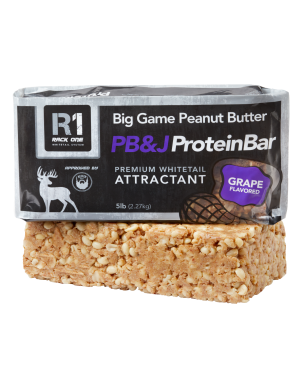 Big Game Butter PB&J Protein Bar 5 lbs. - Grape Flavor